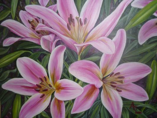 barbados-2011-lilies_r