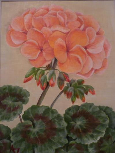 geranium-007_r