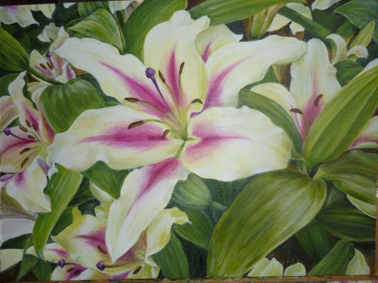 lily-feb-2012-004_r