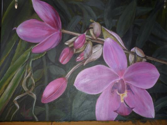 paintings-2011-003_r