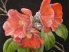 camellia-b_r-2