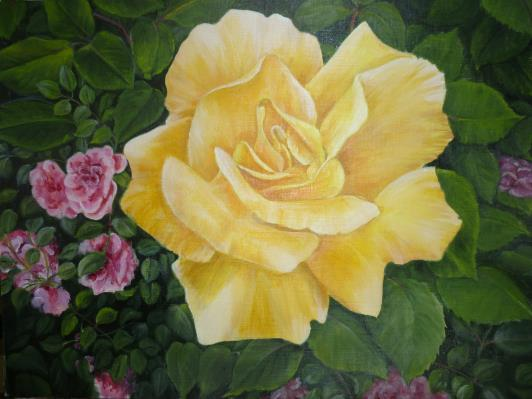 yellow-rose-2012-007_r