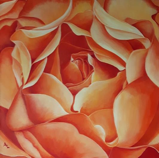 apricot-rose_r