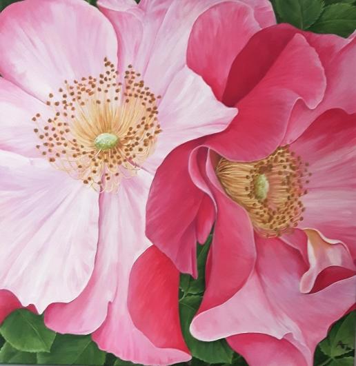 pink-roses_r
