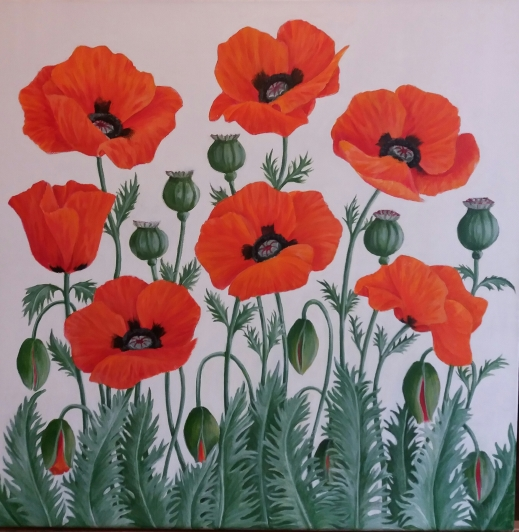 red-poppies_r
